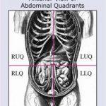 Abdominal Quad